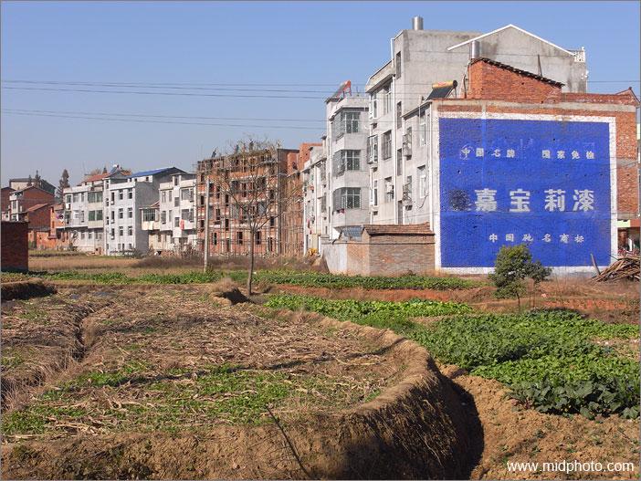 武汉江夏区旅游景点